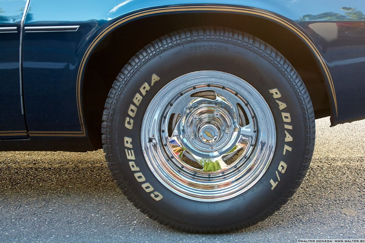 19 Auto americane all'Elvis Days di Treviso
