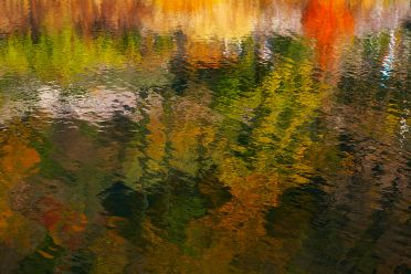 AUTUMN REFLECTIONS ON THE WATER