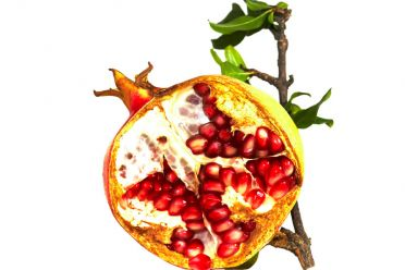 POMEGRANATE...OVEREXPOSED